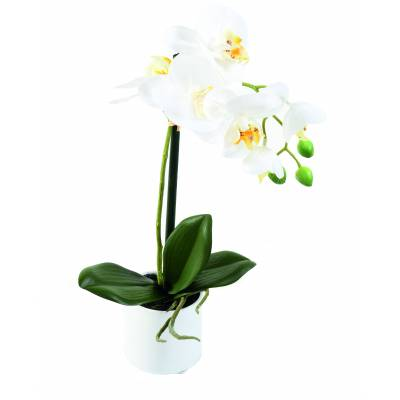 PHALAENOPSIS artificial POT