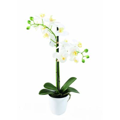PHALAENOPSIS artificielle POT*2