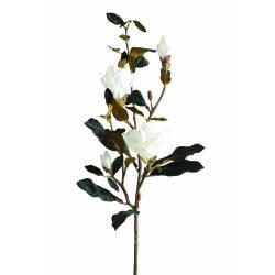 Magnolia artificiel