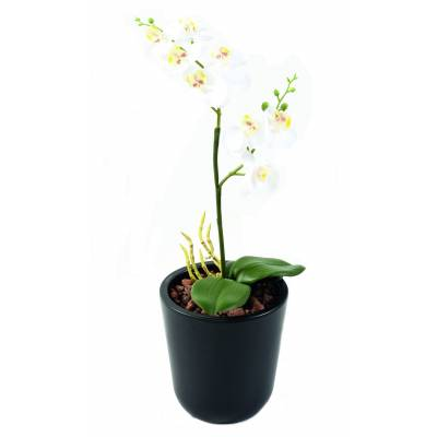 PHALAENOPSIS artificielle DOUBLE