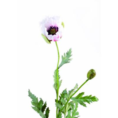Poppy artificial