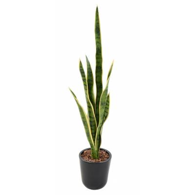 SANSEVIERIA artificial PEG MIXED