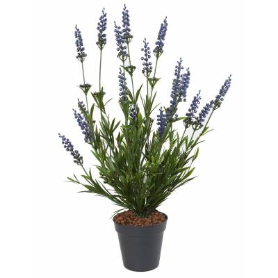 Lavender Artificial