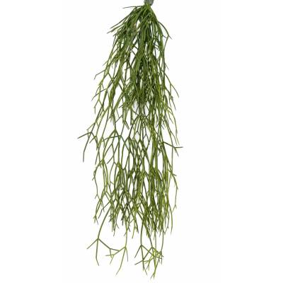 RHIPSALIS Artificial 50