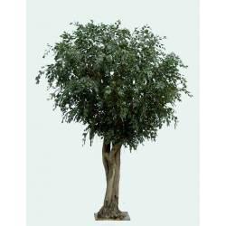 Ficus artificial GEANT TREE