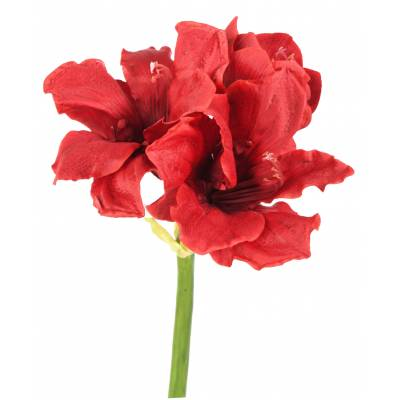AMARYLLIS artificielle 2FL 1BT