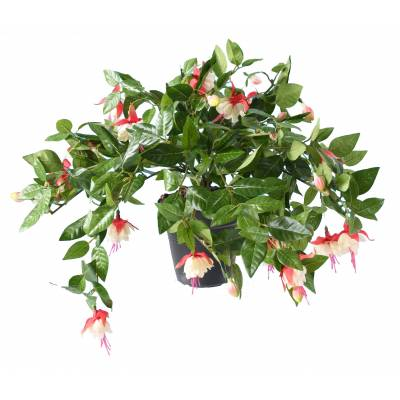 Fuchsia artificiel CHUTE*306