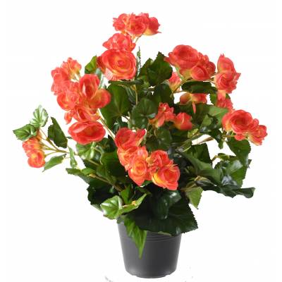 Begonia artificiel*92