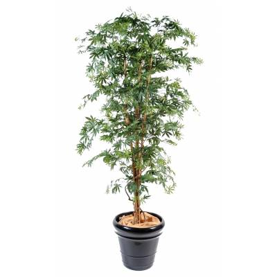 Aralia artificiel new (erable)