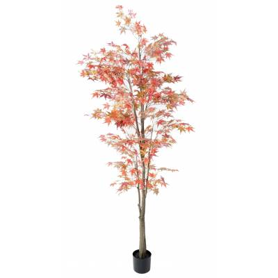 ARALIA Artificial 220 FALL