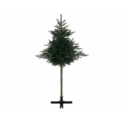 Artificial FIR GRANDIS TRUNK