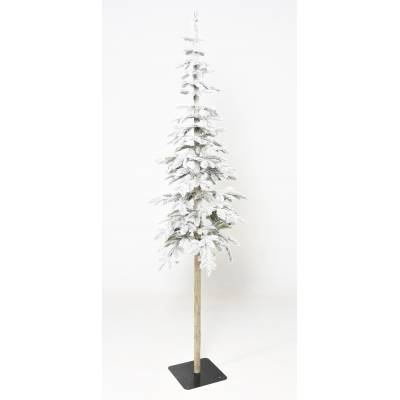 "FIR Artificial "" ALPINE"