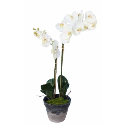 PHALAENOPSIS Artificielle POTTED 85