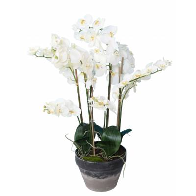 PHALAENOPSIS Artificielle POTTED 105