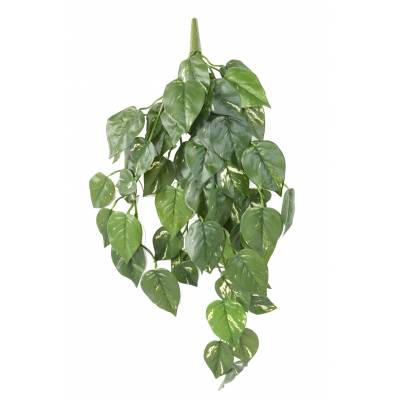 POTHOS Artificial FALL UV