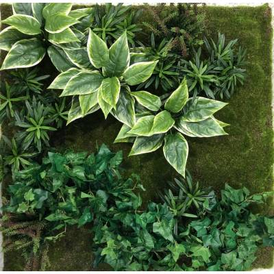 Artificial WALL PLANT C3