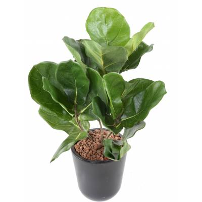 LYRATA Artificial pot