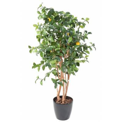 LEMON tree NEW Artificial POTTED ROUND