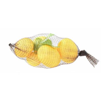 CITRONS Artificiels filet de 6