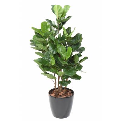 LYRATA Artificial ROYAL BUSH