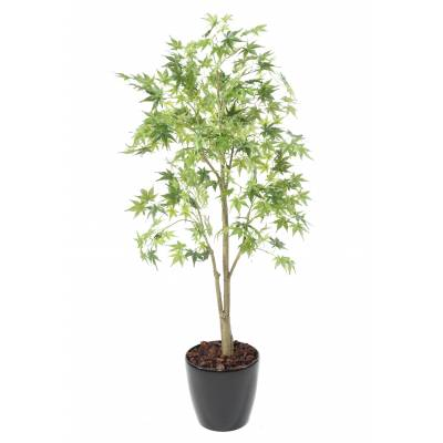 Aralia Artificiel en Pot Rond