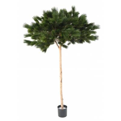 PINE Artificial UMBRELLA 210