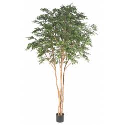 BUCIDA Artificiel TREE 330 LUXE
