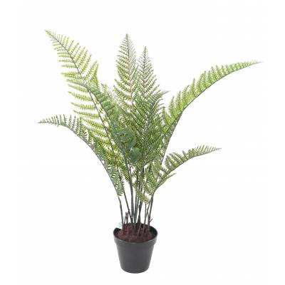 FERN Artificial 83