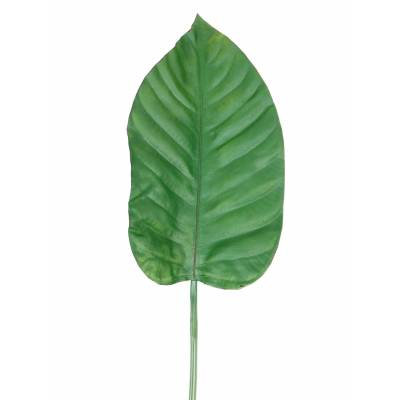 ALOCASIA Artificiel feuille 100