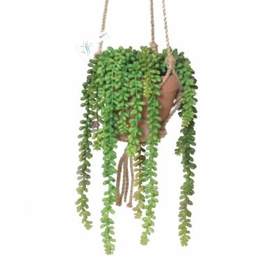 COMPOSITION CRASSULA MACRAME Artificial