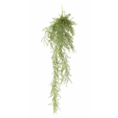 ASPARAGUS Artificiel FERN 120