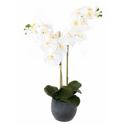 BOUQUET PHALAENOPSIS Artificial *2 POT-GRAPHITE
