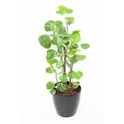 ARALIA Artificial FABIAN