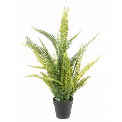 FERN Artificial BOSTON PLAST 75