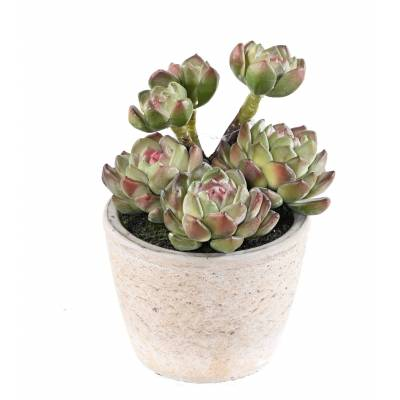 SUCCULENT Artificial 18 IN the POT
