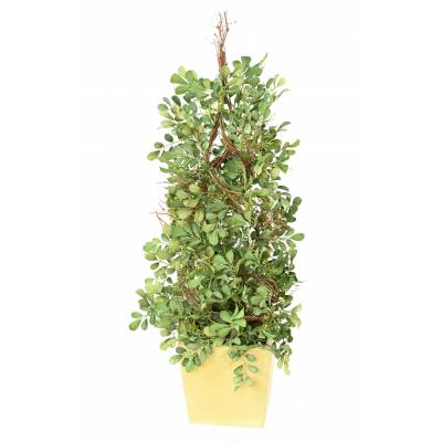 BOXWOOD Artificial SPIRAL POTTED WOOD