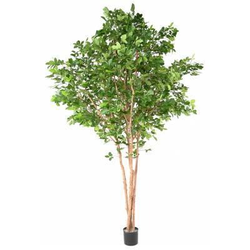 BEECH Artificial GRANDIFOLIA TREE 350