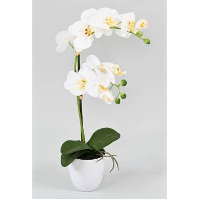 PHALAENOPSIS artificial POT*2