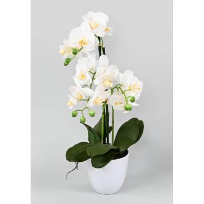 PHALAENOPSIS artificial POT*3