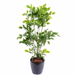 Arbres et arbustes artificiels