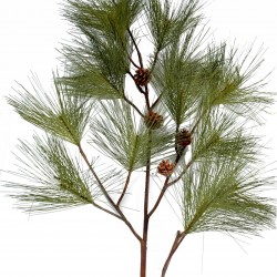 Topiaries fruit pine