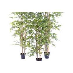 Plante artificielle économique