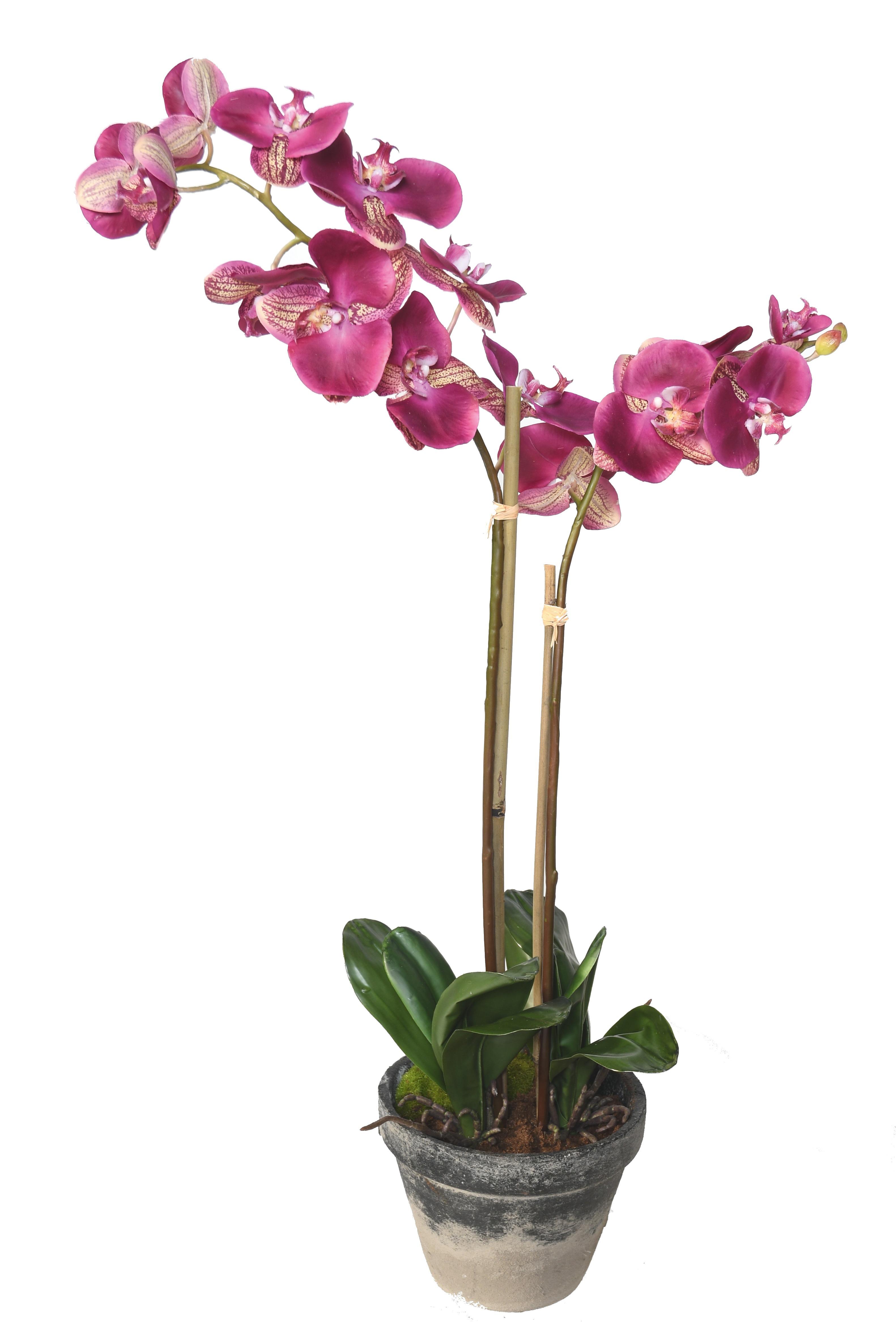fleurenpot
