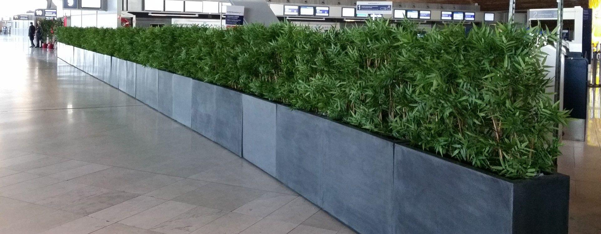 Vert Espace - bambous artificiels
